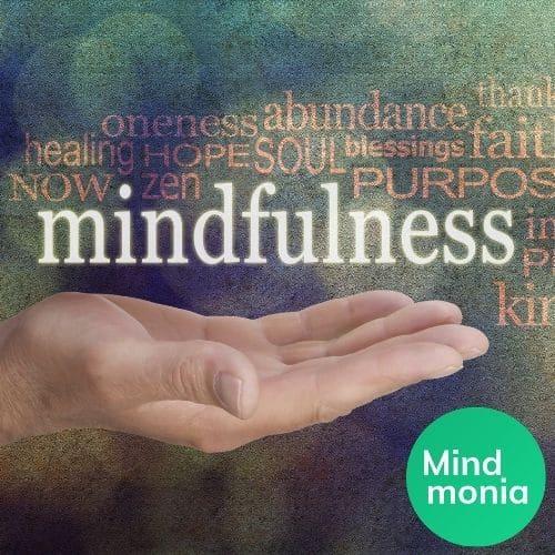 Mindfulness: im Interview mit Axel von Mindmonia